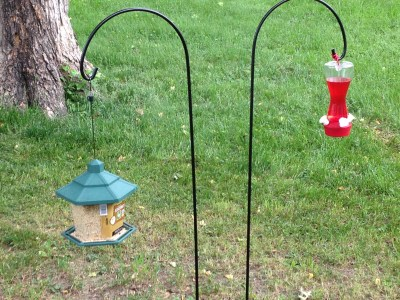 bird feeder and hummingbird feeder