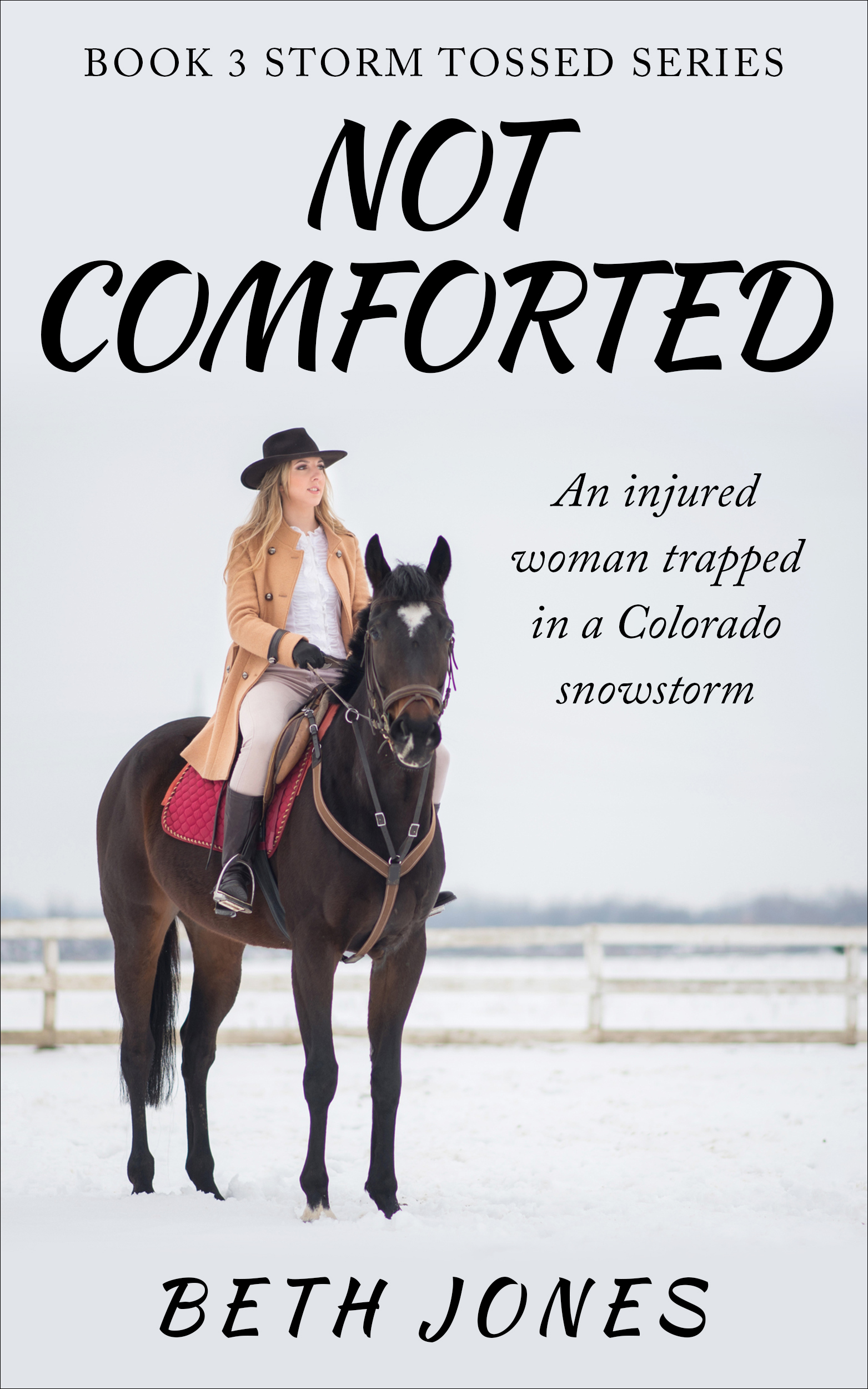 Not Comforted: An injured woman in a Colorado snowstorm
