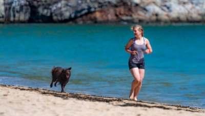 dog and woman running on beach. Image source: Leon Liu, Unsplash