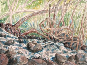 watercolor: Flood, University of Hawaii, Honolulu