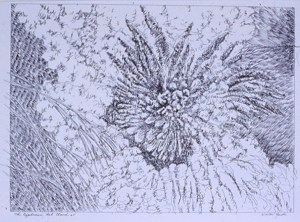 "pen and paper detail, ""Explosion"""