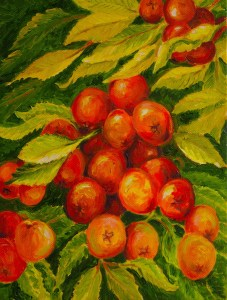 Ripe Crab Apples: oil painting