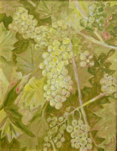 Young Chardonnay: oil painting