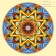 Happy Mandala by Beth Sawickie www.bethsawickie.com/happy-mandala