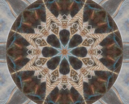 Nature Speaks Mandala by Beth Sawickie