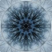 Winter Tree Mandala 2 by Beth Sawickie www.bethsawickie.com/winter-tree-mandala-2