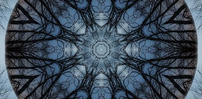 Winter Tree Mandala 3 by Beth Sawickie www.bethsawickie.com/winter-tree-mandala-3