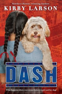 Dash-cover