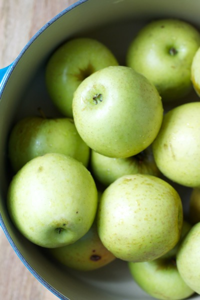 Homemade applesauce is thick, naturally sweet, and intensely apple-y in a way that grainy, watery, artificially sweetened store-bought sauce can't compete with!