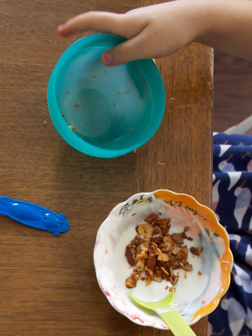 yogurt and paleo granola