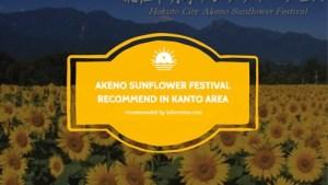 akeno sunflower festival kanto