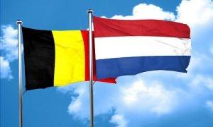 Flemish Dutch translator