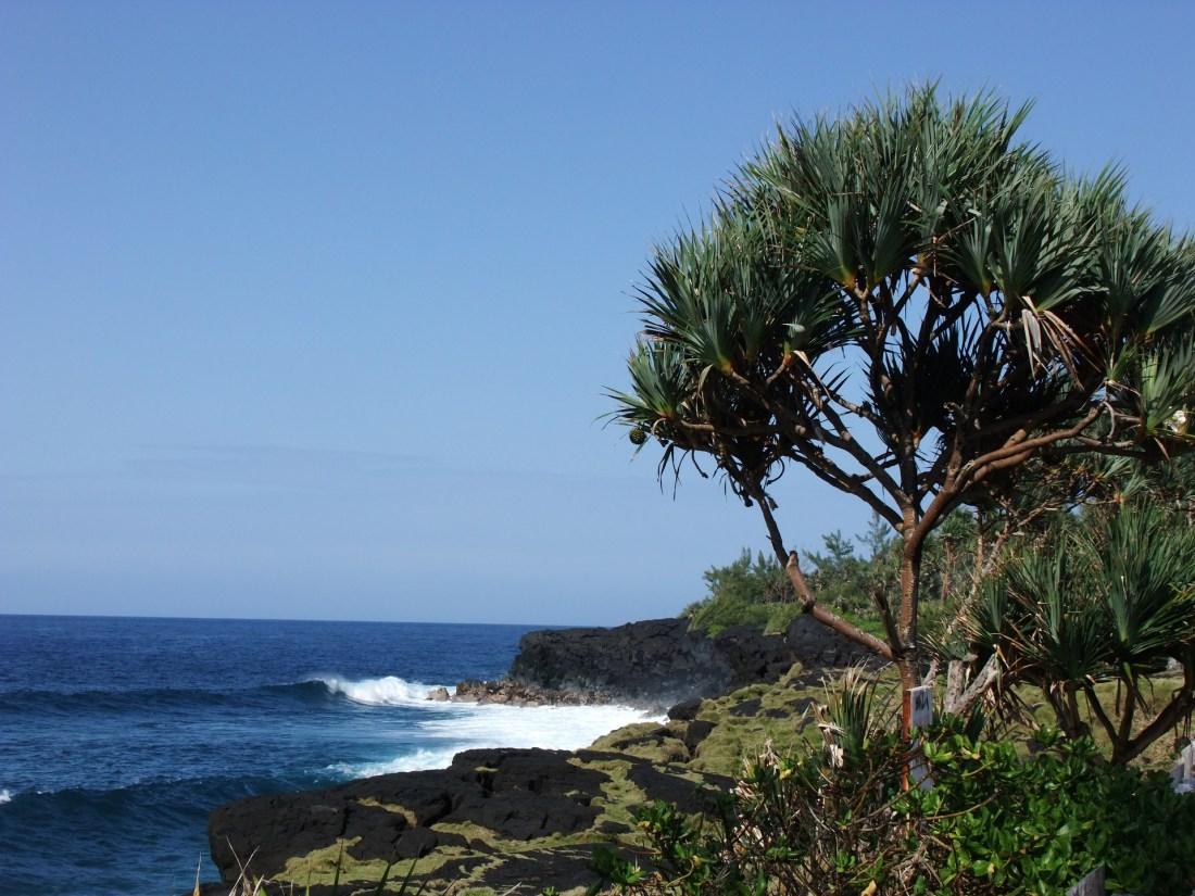 Das azurblaue Wasser der karibischen Insel La Réunion sorgt für perfektes Urlaubs-Feeling