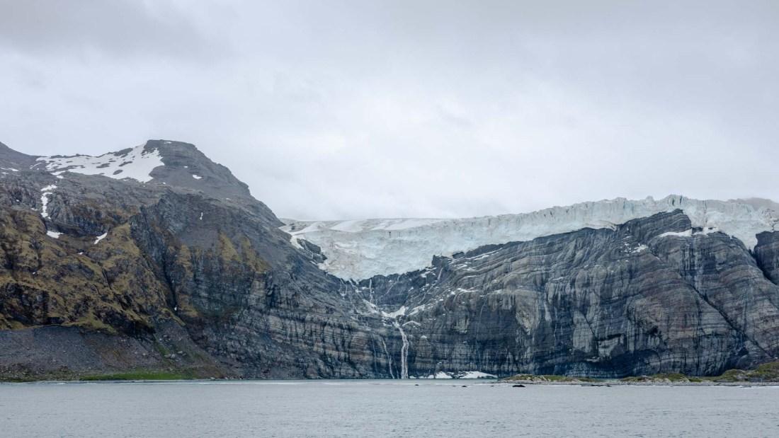 Gletscher, Royal Bay, Südgeorgien