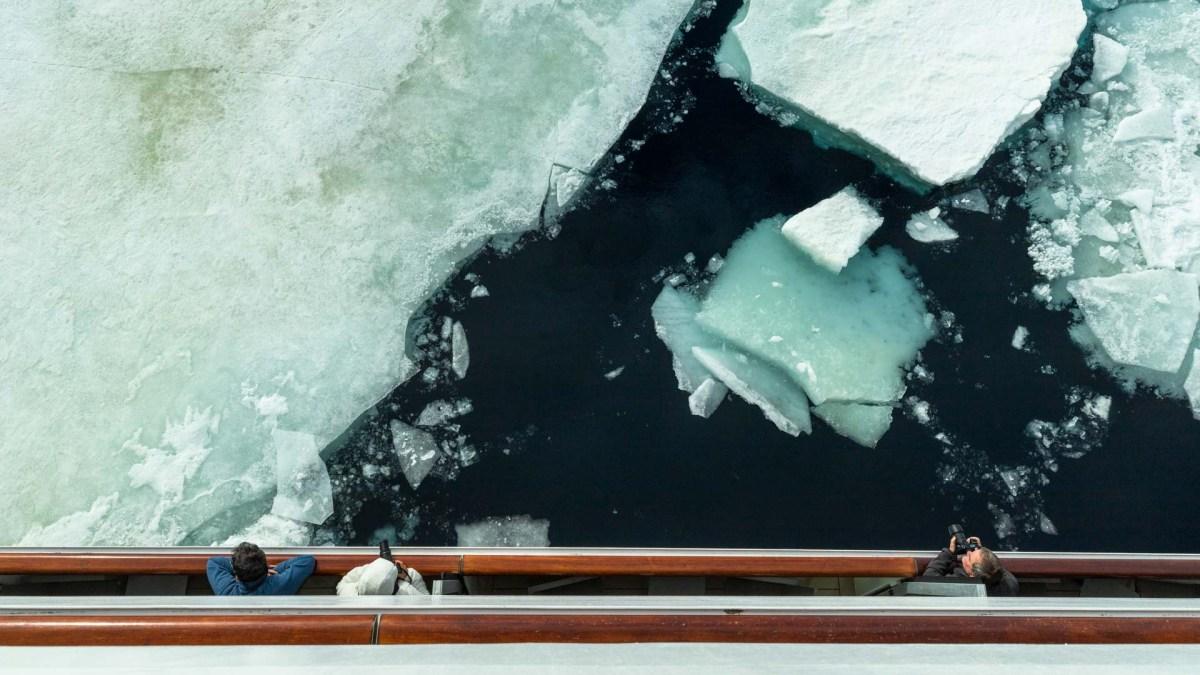 Weddell Sea, Packeis