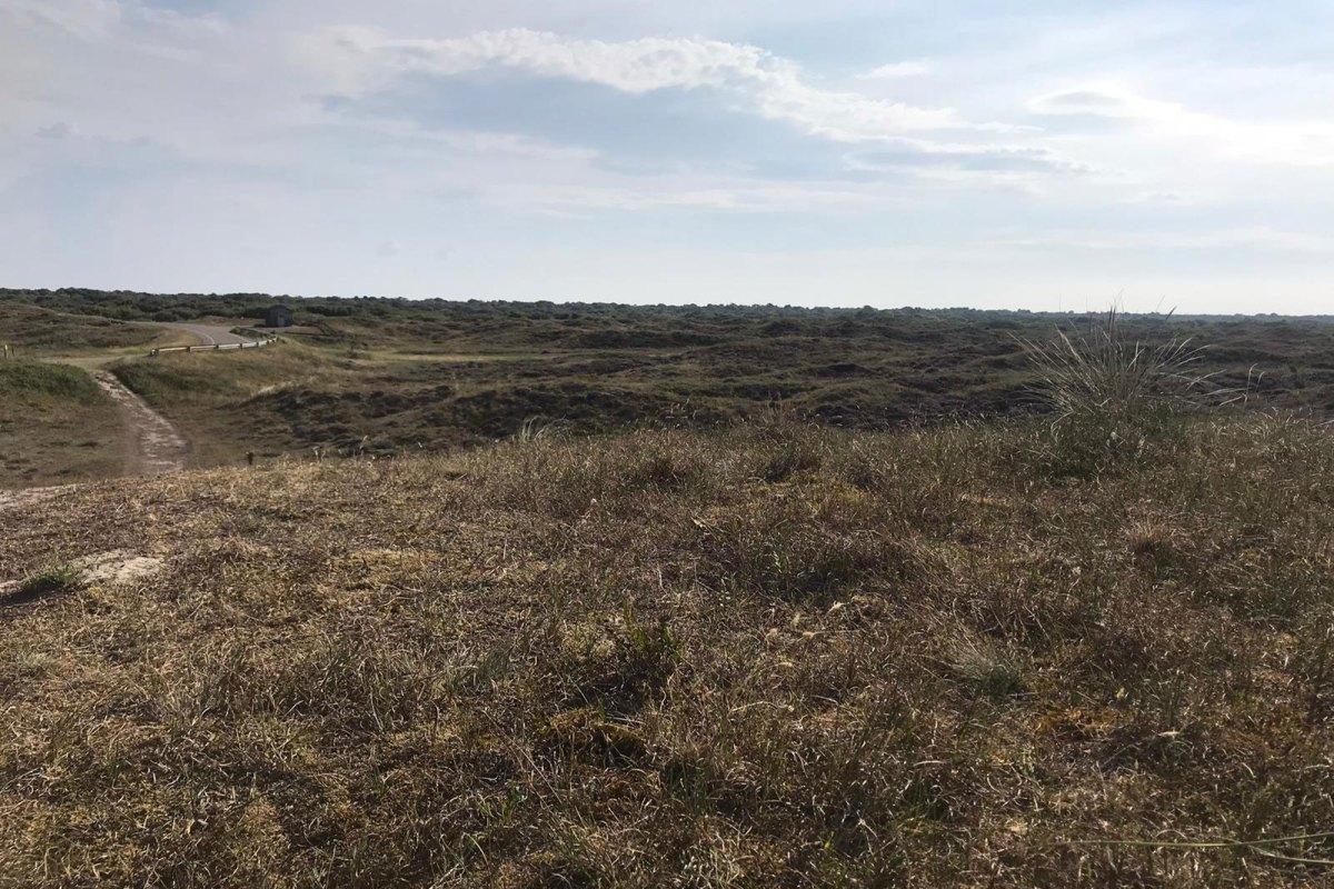 Nationalpark auf Texel
