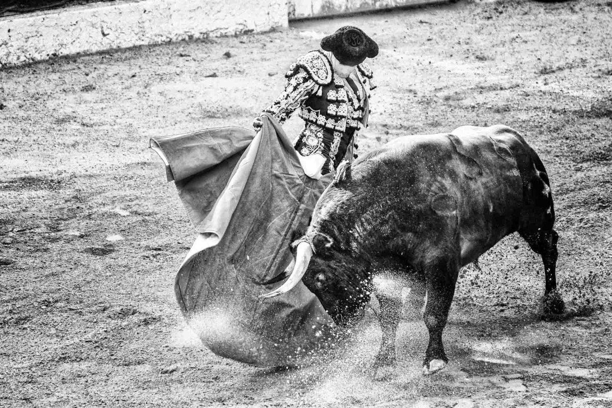 Torero, Stierkampfarena, Spanien