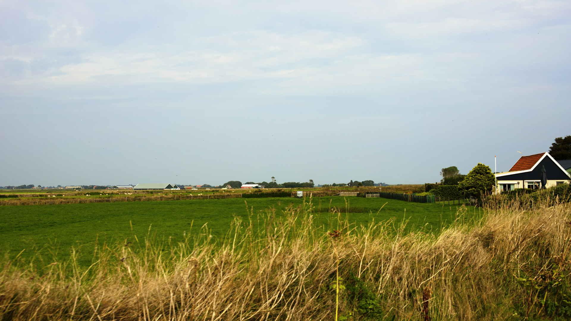 Texel Landschaft