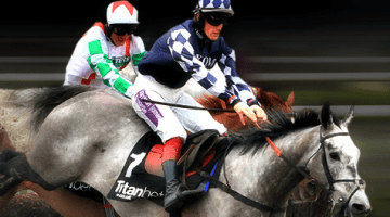 free horse racing bet calculator