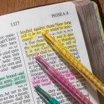 calgary dry marker bible study