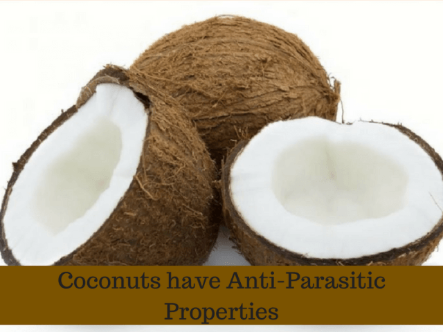 Coconut for stomach worms