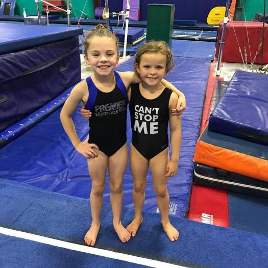 premier gymnastics 2