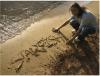 Starfish featured image