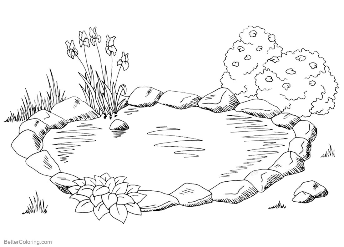 Pond Coloring Pages Sketch