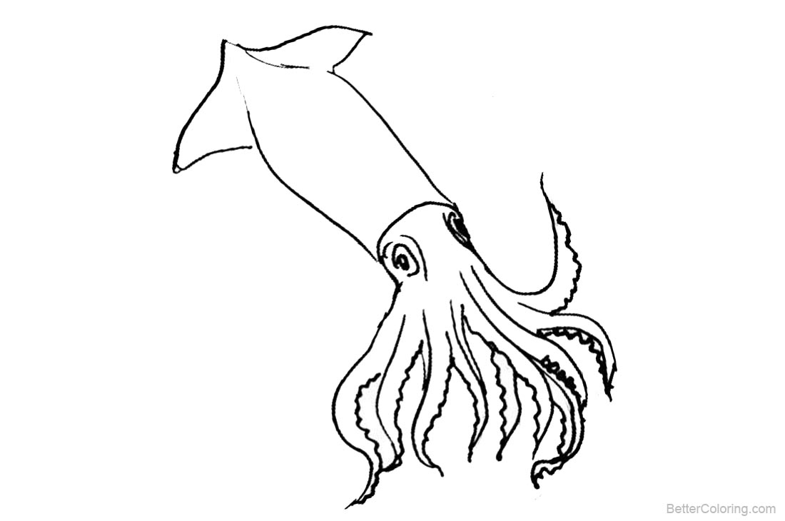 squid coloring page free coloring pages download xsibe jellyfish