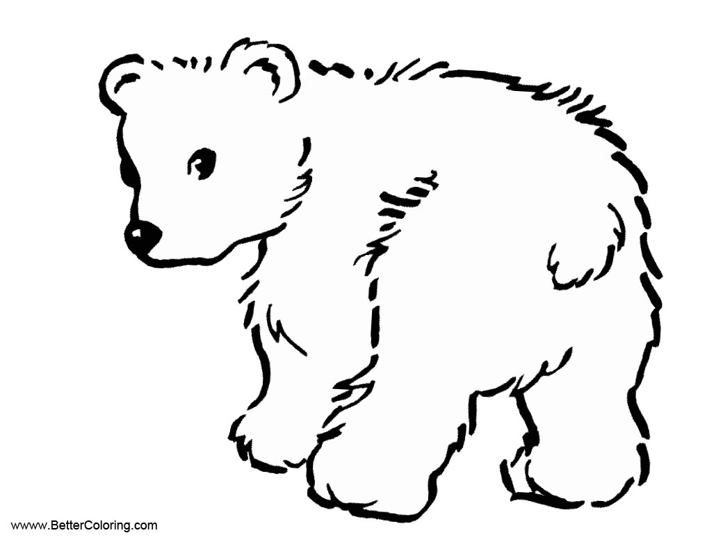Worksheet Tundra Animals