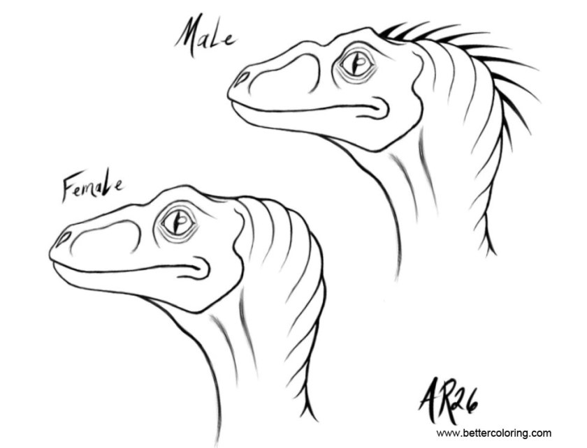 jurassic world coloring pages raptor sketches