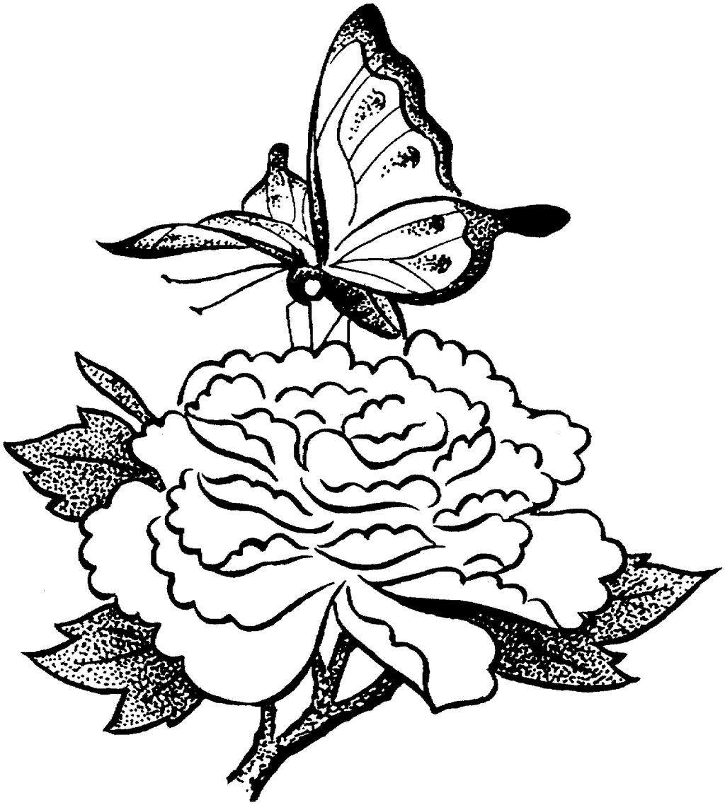 Butterfly Coloring Worksheet