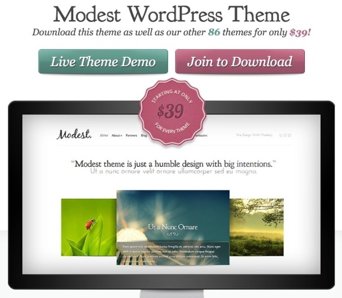 portfolio and products display WordPress theme