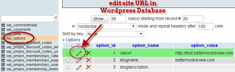 edit site url in database wordpress