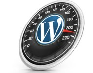 fast wordpress site and hosting server