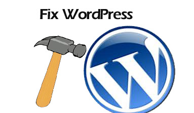tech support to fix WordPress problems