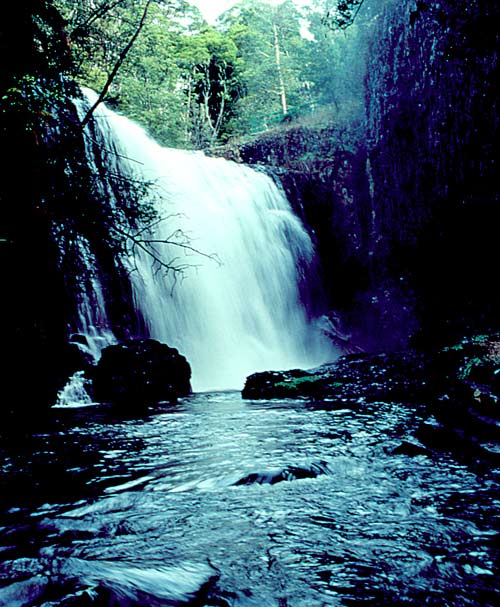 https://i2.wp.com/www.betterlivingthroughbeowulf.com/wp-content/uploads/2010/06/waterfall.jpg