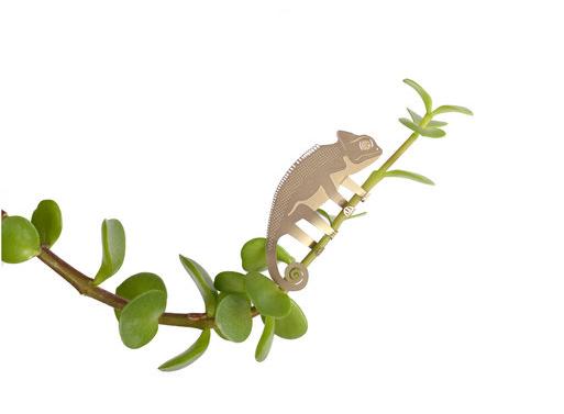 Plant Animals
