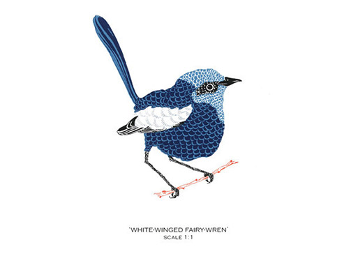 Small Bird Card Set