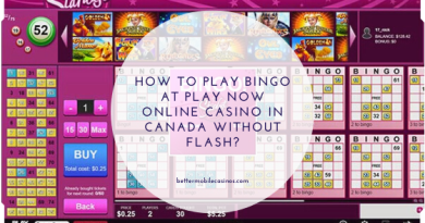 How to play bingo at PlayNow online casino in Canada without flash