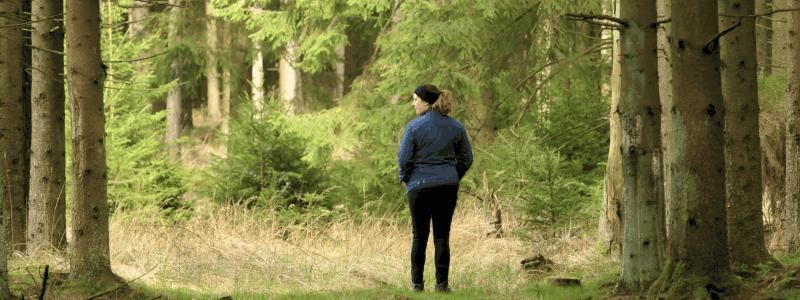 Bornholm Woods Tranquility Hannah
