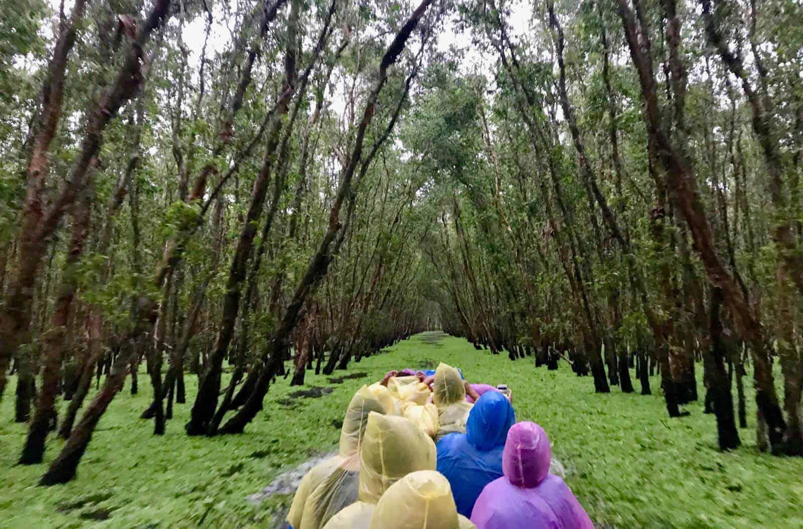 Sunken Forest Mekong Vietnam betternotstop
