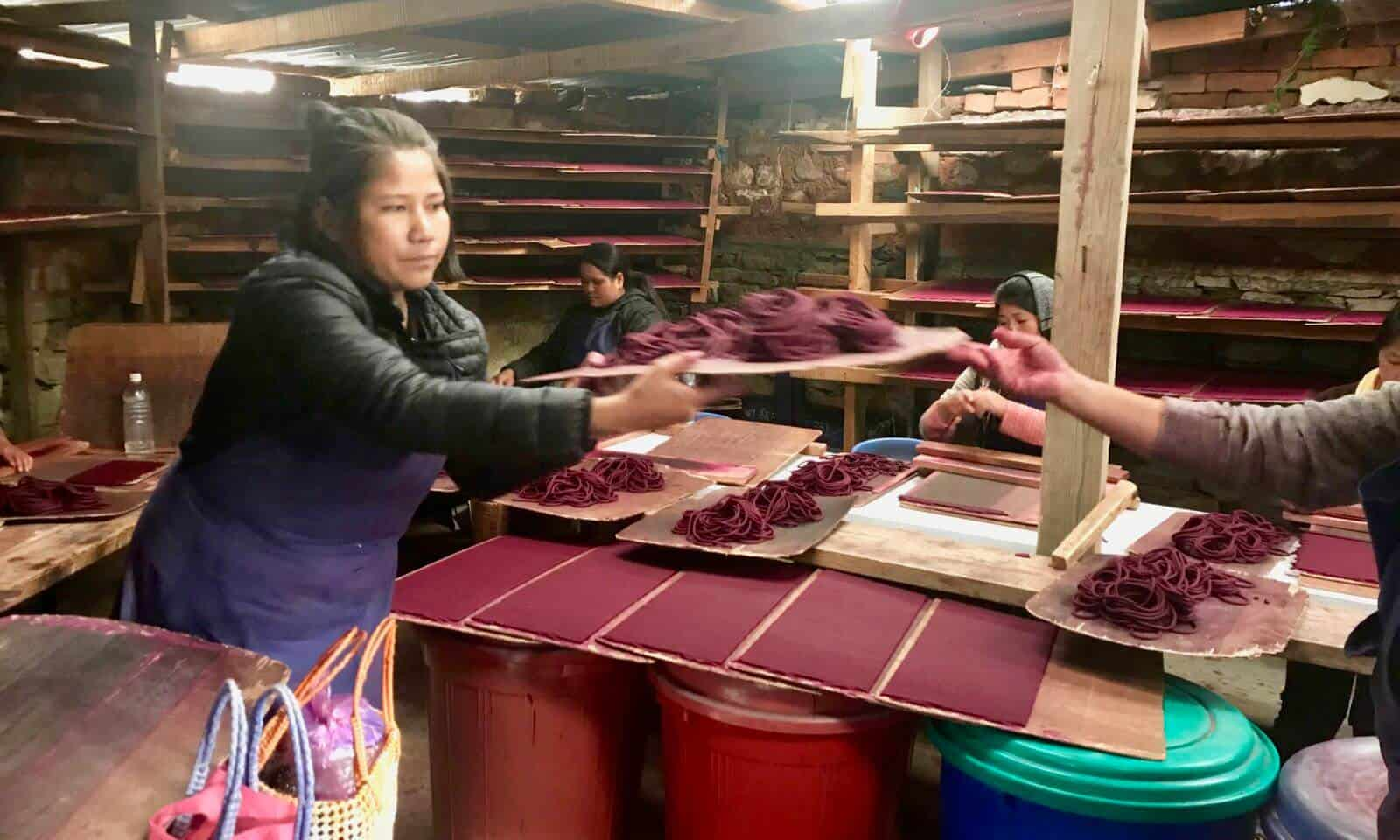 Bhutan factory women betternotstop