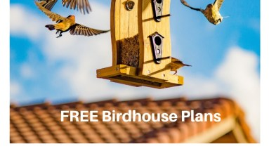 How to Make a Gorgeous Birdhouse