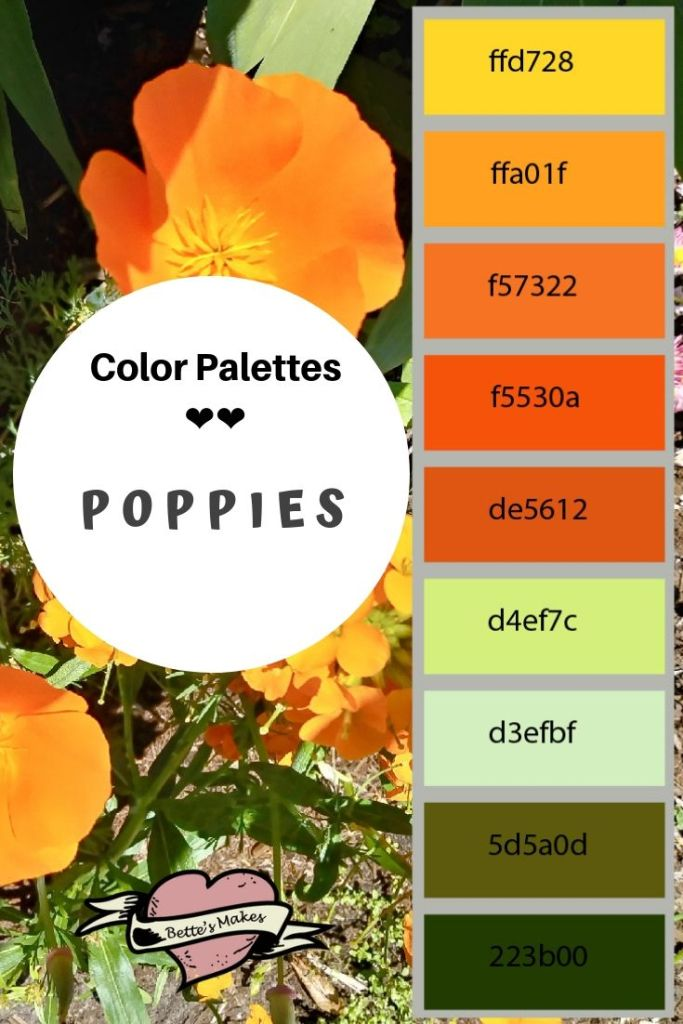 Color palettes - poppies from Bettesmakes.com