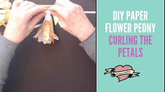 DIY Paper Flower Peony - Curling the  Petals - BettesMakes