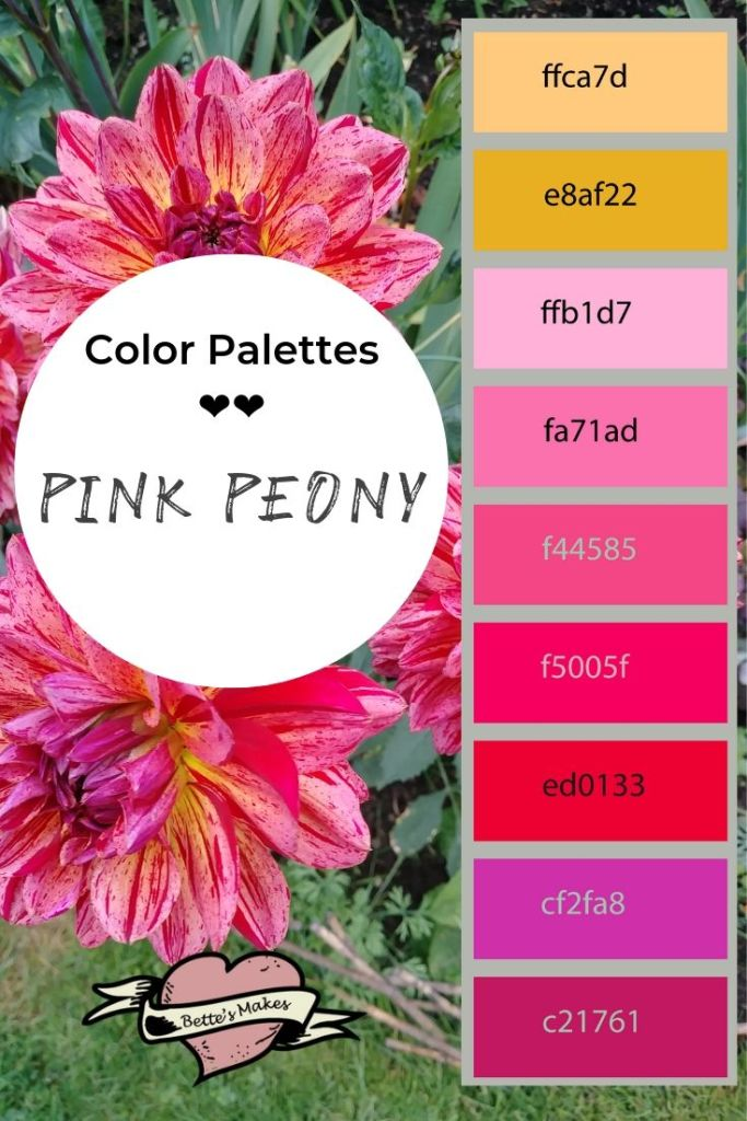 Breathtaking color! Decorating using this palette would be absolutely awesome! Perfect for DIY Home Decor!!! DIY Paper Flowers using print and cut with your Cricut would be amazing! #cricut #DIYhomedecor #paperflower #DIYpaperflower #colorpalette #peony