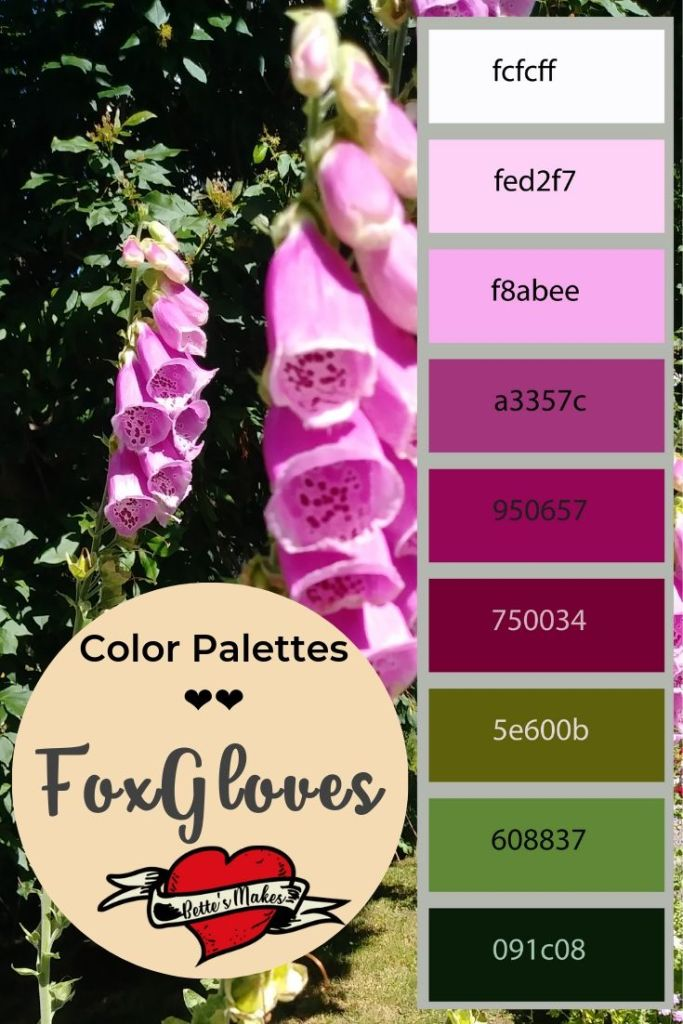 FoxGloves provide us with beauty in the early summer and a color palette that is great for DIY Home Decor. BettesMakes.com
