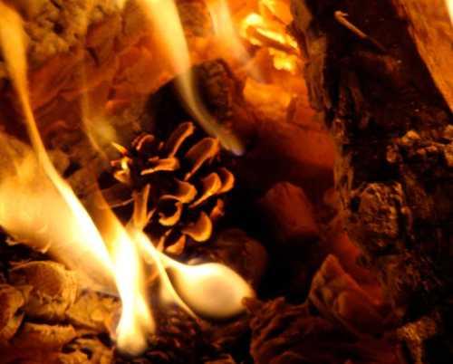 Tannenzapfen und Feuer