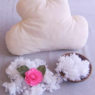 Wolke Baumwolle